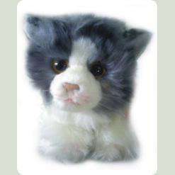 Кошка Нюрка