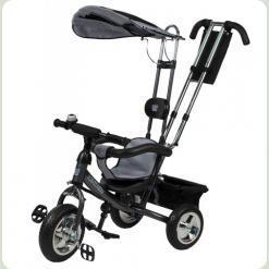 Велосипед 3-х колесный Mini Trike (серебрянный)