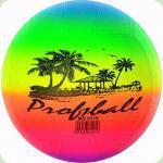 Резиновый волейбольный мяч Profitball, 21,6 см. (MS 0116)