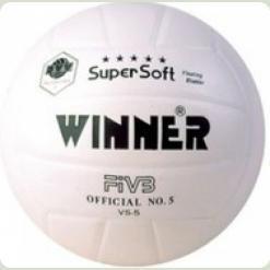 М'яч волейбольний W. Super S (white) (шкіра)